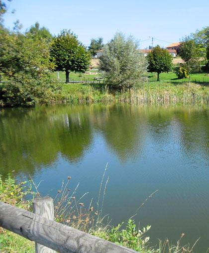à la découverte des étangs de La Gresle