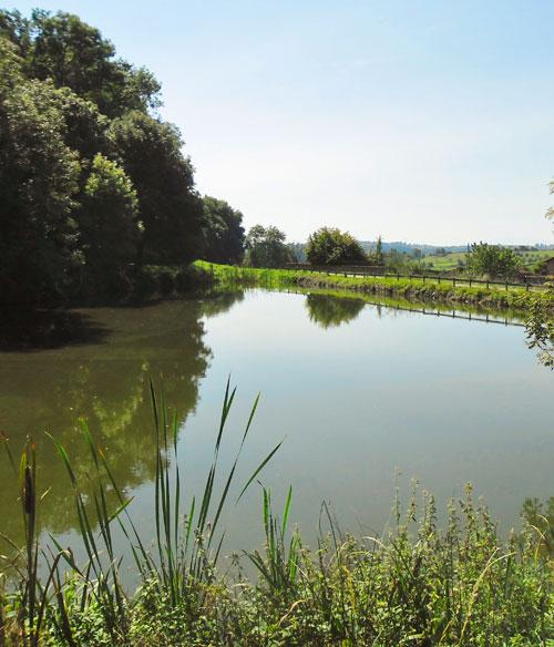 étang du parc du château